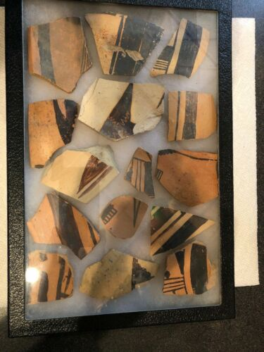 Indian Pottery Shards In Display Case Relic lot Native American