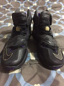 Lebron 13 Basketball Shoes.