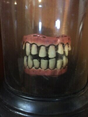 ANIMATED CHATTERING TEETH APOTHECARY JAR HAUNTED GEMMY LIGHTS UP PROP