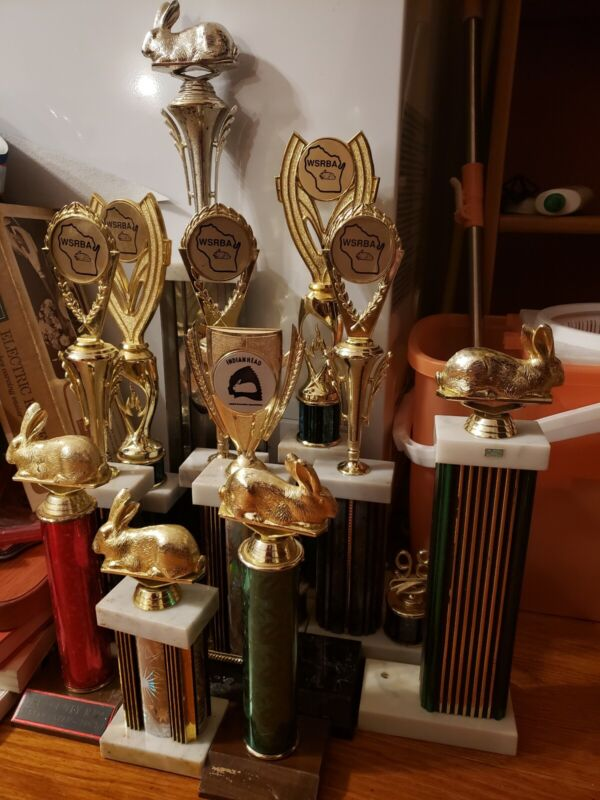 Lot Of 11 Rabbit Trophies