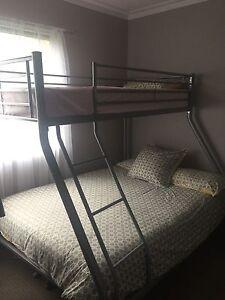 Bunk Bed Dromana Mornington Peninsula Preview