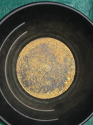 2 lb Gold Paydirt Flakes Nuggets Precious Metals Panning Concentrate