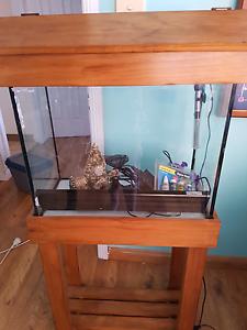 Fish tank- full kit Greta Cessnock Area Preview