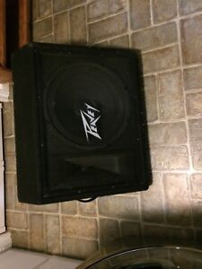 Peavey 115T floor monitor