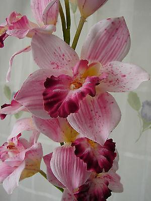 Künstliche Phalaenopsis Orchidee getopft 89cm rosa-weiß Kunstblumen Orchideen
