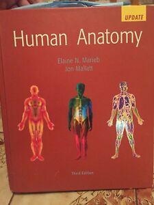 Human anatomy third edition
