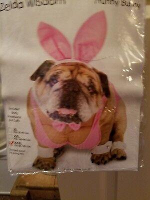 3x Playboy Bunny dog costume,slightly new worn once, fits Labrador retriever. (Labrador Dog Costumes)
