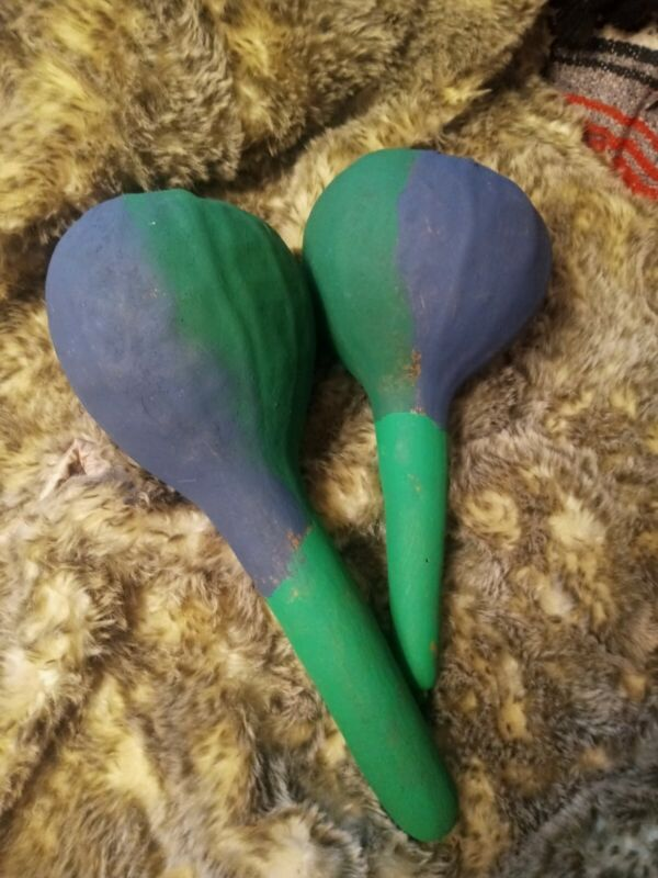 **AWESOME  NATIVE AMERICAN NATURAL GOURD RATTLES.. GOURD DANCE RATTLES NICE **