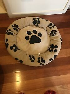 Small Dog bed Southport Gold Coast City Preview
