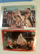 AFl COLLECTOR CARDS 1997 Kambah Tuggeranong Preview