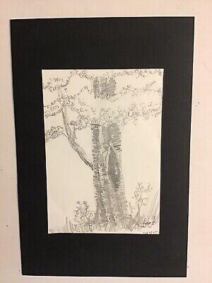 Pencil Sketch of a Tree