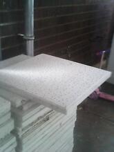 ceiling tiles Munno Para Playford Area Preview