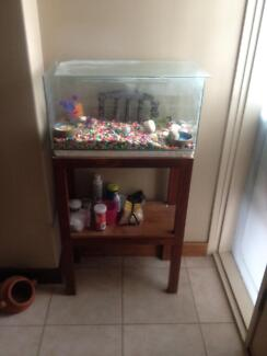 Hermit Crazy Crab Tank and Stand