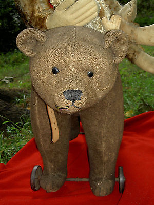 Large early antique Steiff BEAR on iron wheels, ear button, growler & pullstring