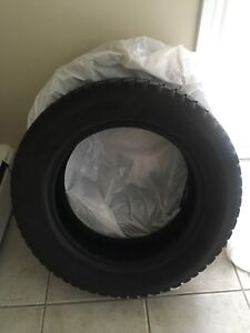 2 Grip 20 Winter Antares tires