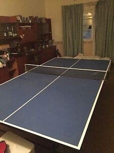 Table tennis table New Farm Brisbane North East Preview