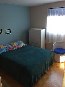 Set de chambre lit double et meuble 185$