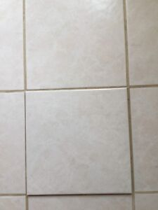 Wanted - specific floor tiles