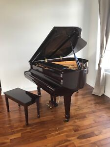 Baby grand piano young chang