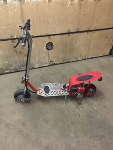 Gas scooter and pocket bike!