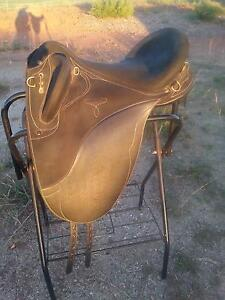 Wintec Pro Stock CS Saddle with Cair Gin Gin Bundaberg Surrounds Preview
