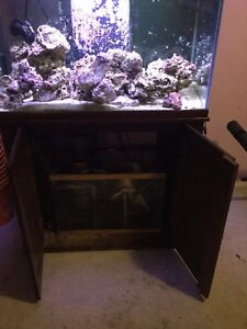 Salt water aquarium  now $400