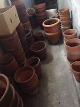 Terracotta pots New Lambton Heights Newcastle Area Preview