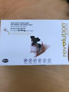 Revolution for Dogs - 5.1-10kg body weight - 4 pack