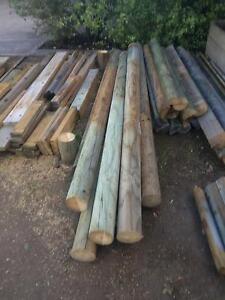 Copper logs - Treated pine New Norfolk Derwent Valley Preview