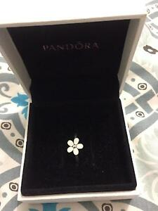 Pandora Ring Size M Thornton Maitland Area Preview