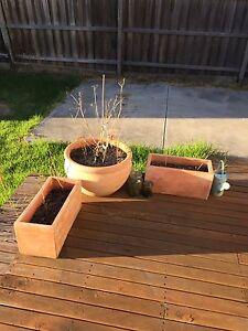 Terracotta pots Hadfield Moreland Area Preview
