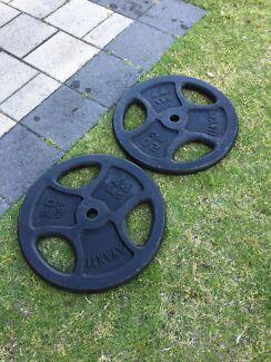 20kg steel bodybuilding plates