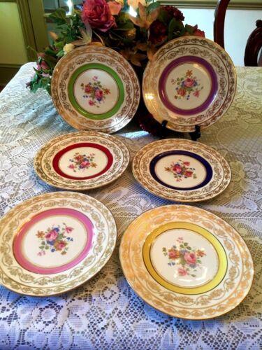 Set Of Six Gorgeous Antique M & R Hand Painted Pink Floral Bouquet Plates