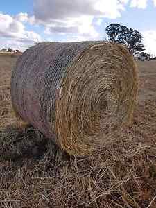 Oaten and rye hay for sale Huntly Bendigo Surrounds Preview