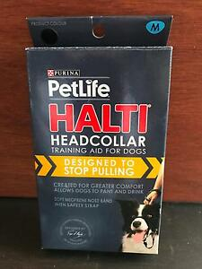 Dog Halti Head Collars Maitland Maitland Area Preview