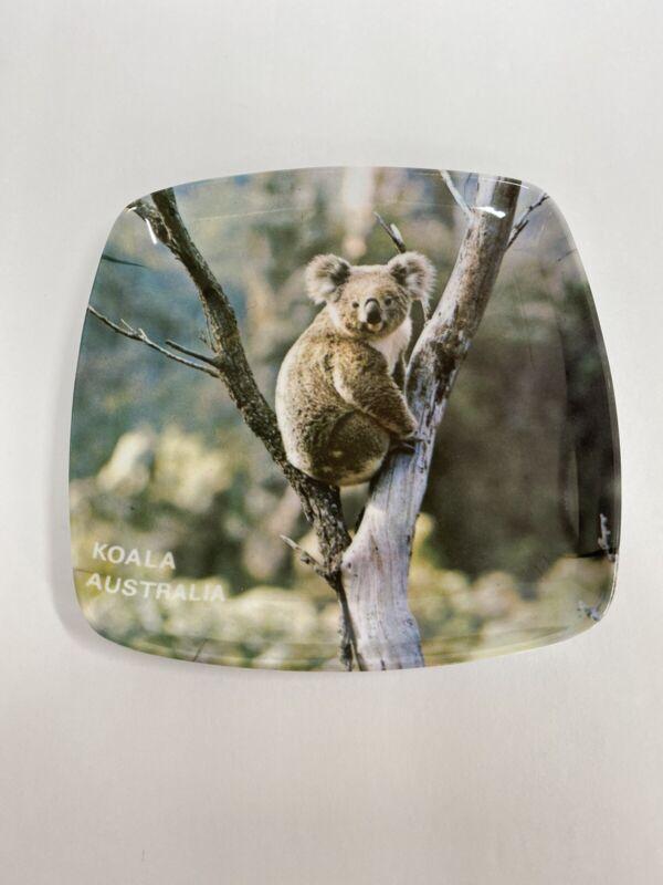 Vintage Melamine Citer Australia Koala Picture Square Pin Coin Keys Dish Tray