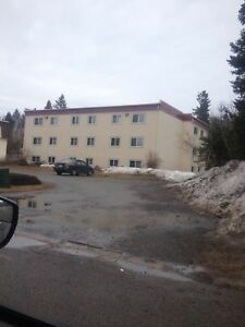 12 Royal Parkway #8 - 2 BR Condo by UNB, H&L, W/D, Parking™