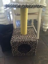 Cat scratch pole Evanston Gawler Area Preview
