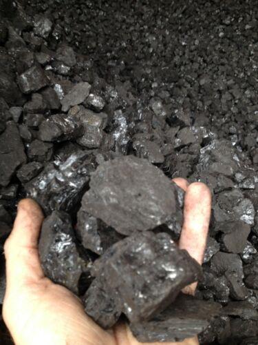 Bituminous Coal Blacksmith Coal (25lbs.)