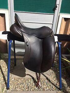 Peter Horobin Liberty saddle Baxter Mornington Peninsula Preview