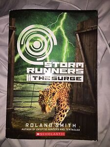 Storm Runners (The Surge)