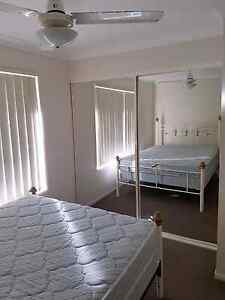 Room for rent Churchill Ipswich City Preview