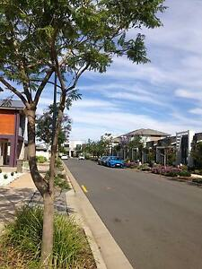 3 BEDROOMS 2 BATHROOMS in ST clair ONE ROOM FOR RENT Cheltenham Charles Sturt Area Preview