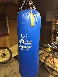 Punching bag Genesport