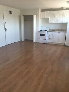 Avail NOW! Bright, Clean Studio, Heat Incl, Central!