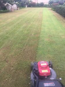 Sergio's Mowing Service Ryde Ryde Area Preview