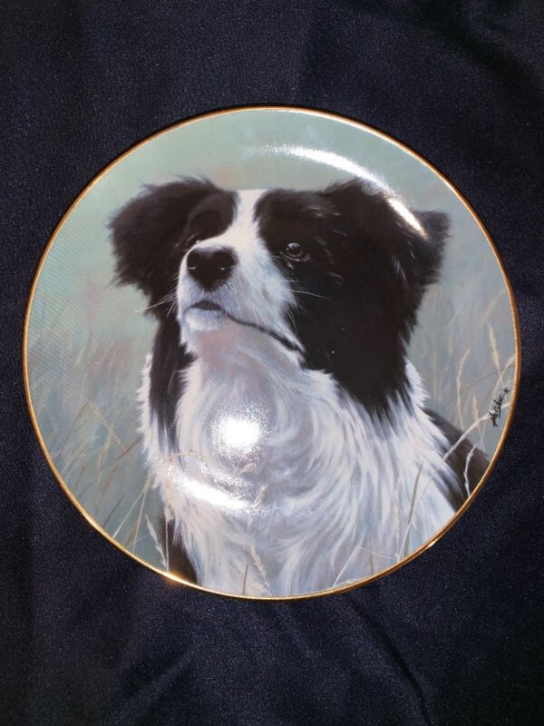 Danbury Mint Border Collie Yours Faithfully Limited Edition Plate
