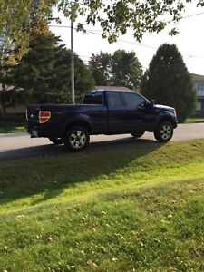 2009 Ford F-150 FX4 Off-Road