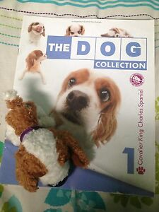 The dog Collection cavalier King Charles spaniel Caroline Springs Melton Area Preview