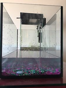 20 Gallon Fish Tank ( 7 Tropical Fish Included)